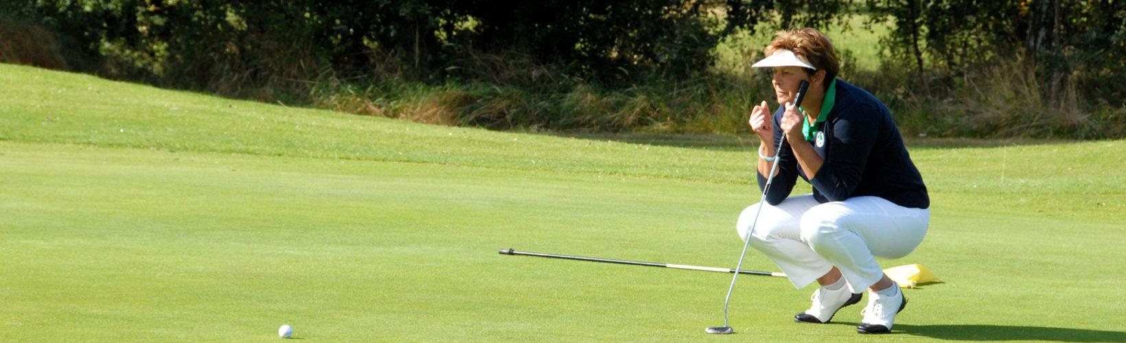Play golf in Karlstad