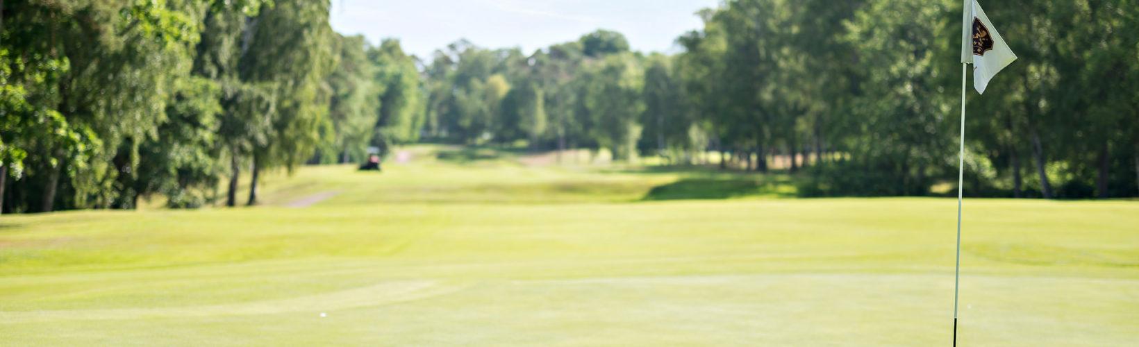 Golfa i Tylösand