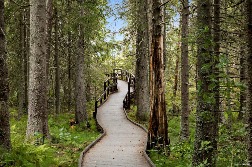 Hållbar campingsatsning i Höga Kusten