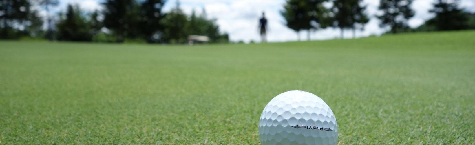 Play golf in Kolmården