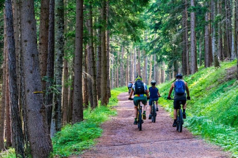Kør på mountainbike om efteråret/foråret