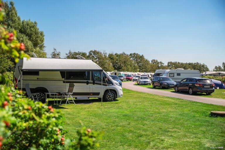 campingområde med husvagnar och husbilar uppställda på gräs i lummig miljö