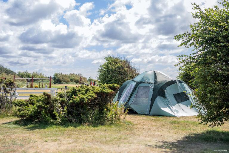 tält i lummigt område på camping intill lekplats med gungor och klätterställning