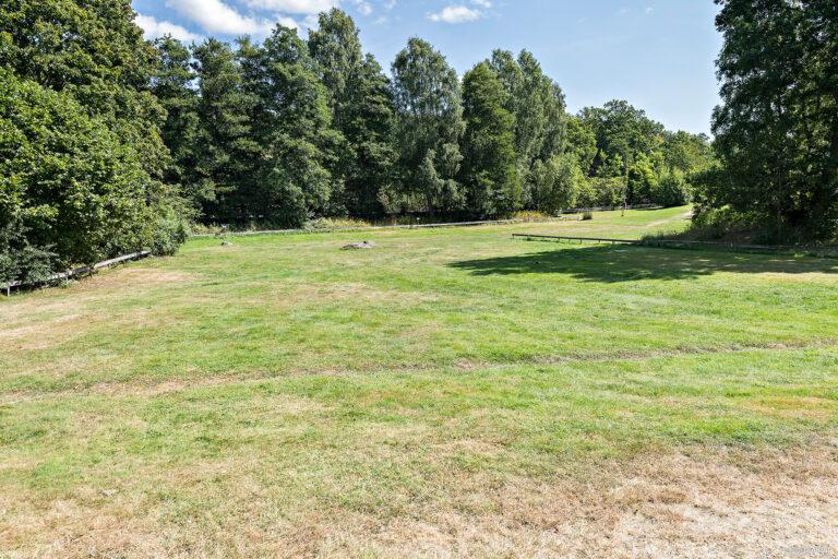 stor gräsyta mellan två skogsdungar på camping